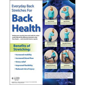 Back Safety: Keep Your Back In Action - Back Stretches Poster