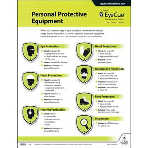 EyeCue® PPE Laminated Poster