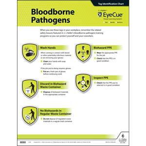 EyeCue® Bloodborne Pathogens Laminated Poster