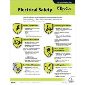EyeCue® Electrical Safety Laminated Poster