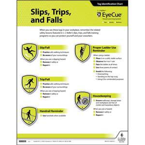 EyeCue® Slips, Trips & Falls Laminated Poster