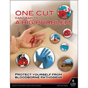 Bloodborne Pathogens: Safety in the Workplace Training Program - Awareness Poster