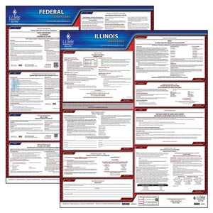 State & Federal Employment  Law Posters