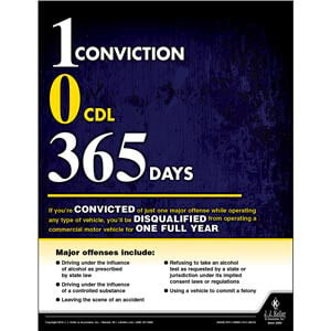 Convicted - Disqualified - One Full Year - Driver Awareness Safety Poster