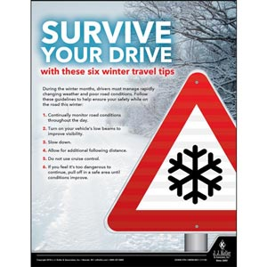 Survive Your Drive - Driver Awareness Safety Poster