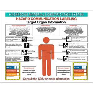 HMIS® III Target Organ Poster