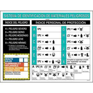 HMIS® III Wall Poster - Spanish