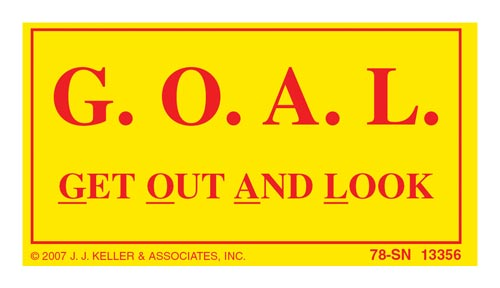 Get Out And Look (G.O.A.L.) Label - Yellow Vinyl (00121)