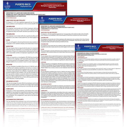 Puerto Rico & Federal Electronic Labor Law Poster Management Service (00769)
