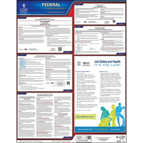 2019 Federal Labor Law Poster with FMLA Notice (03586)