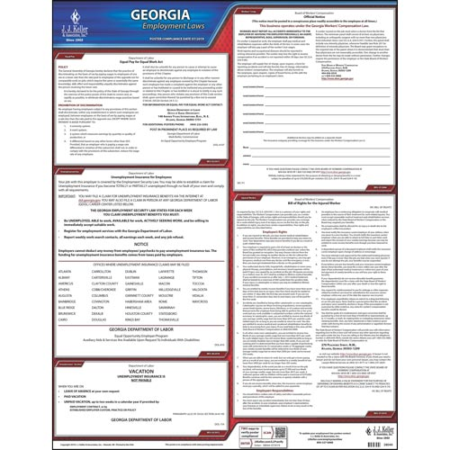 2020 Georgia & Federal Labor Law Posters (03987)