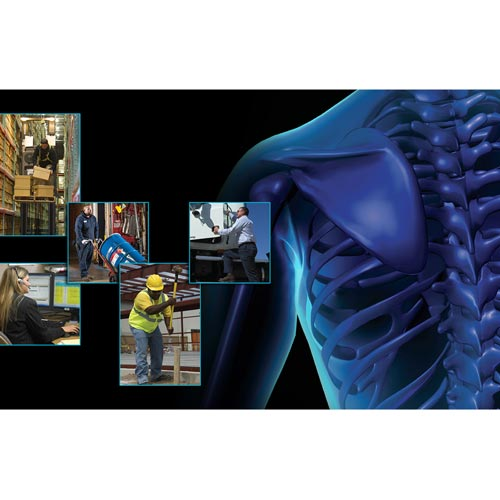 Back Safety: Keep Your Back In Action - Online Training Course (08413)