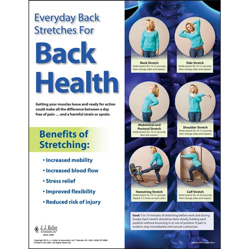 Back Safety: Keep Your Back In Action - Back Stretches Poster (08416)