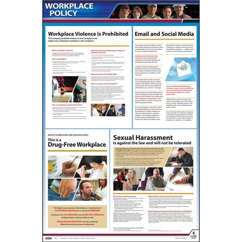 Workplace Policy Poster (02044)