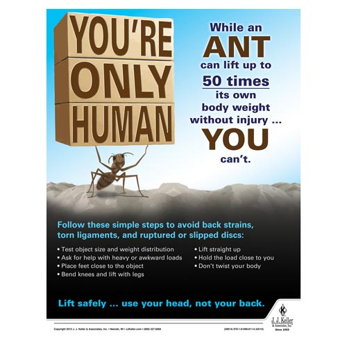 You're Only Human - Health & Wellness Awareness Poster (08840)