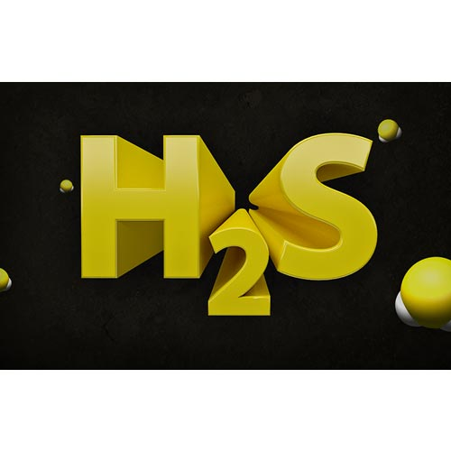 Hydrogen Sulfide for General Industry - Online Training Course (08882)
