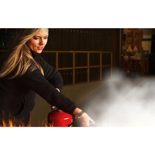 Fire Extinguisher Use - Online Training Course (08939)