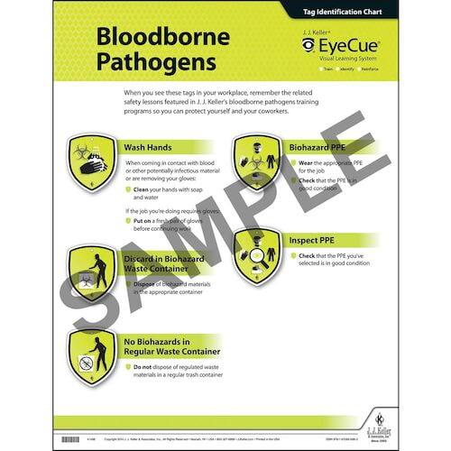 EyeCue® Bloodborne Pathogens Laminated Poster (09070)