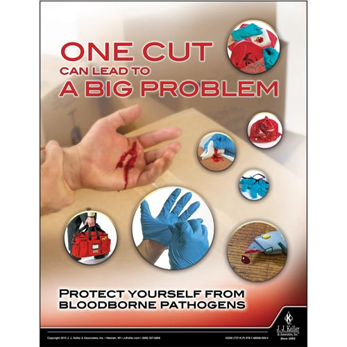 Bloodborne Pathogens: Safety in the Workplace Training Program - Awareness Poster (09282)