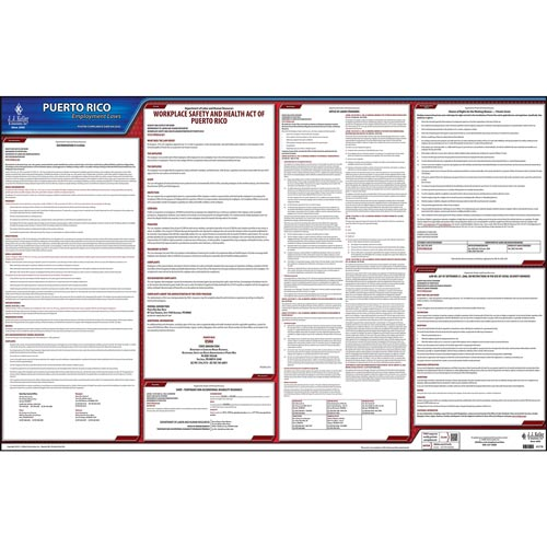 2020 Puerto Rico & Federal Labor Law Posters (03997)