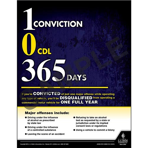 Convicted - Disqualified - One Full Year - Driver Awareness Safety Poster (09616)