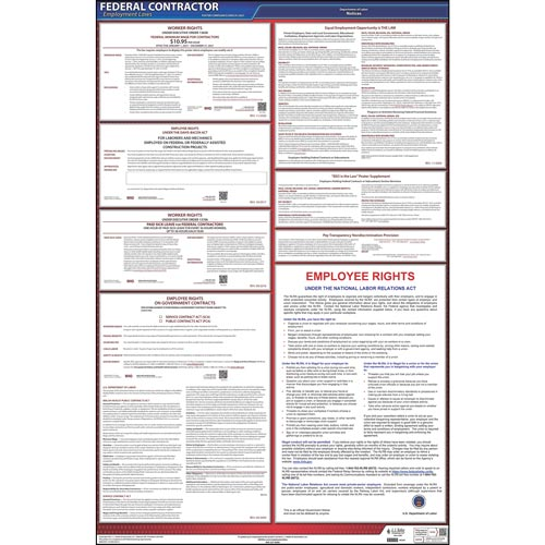 Federal Contractor Poster (05449)