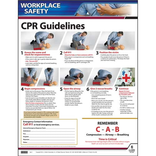 CPR Guidelines Instructional Chart (00252)