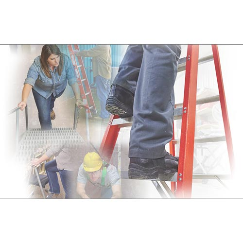 Ladder Safety for General Industry - Online Training Course (012381)