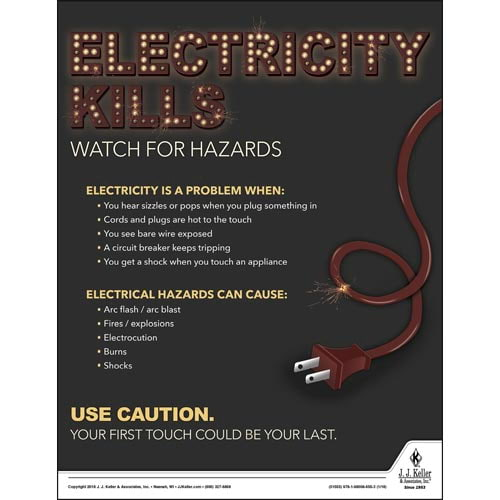 Electricity Kills - Workplace Safety Training Poster (013069)