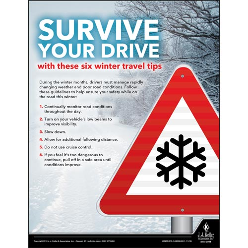 Survive Your Drive - Driver Awareness Safety Poster (013498)