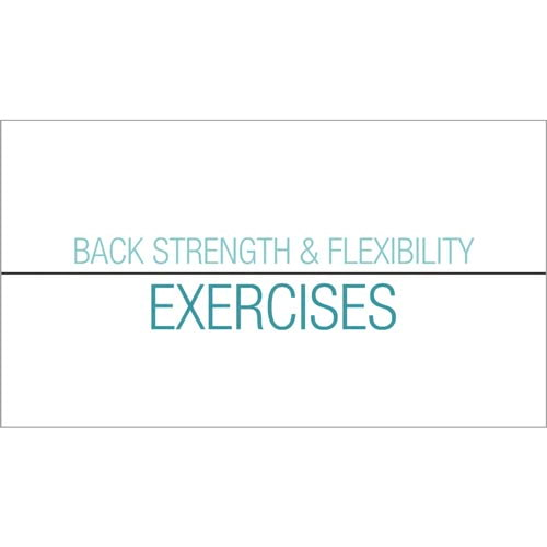 Back Safety: Back Strength And Flexibility Exercises - Streaming Video Training Program (014912)