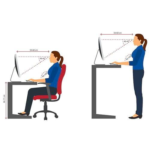 Office Ergonomics – Online Training Course (Canada) (017451)