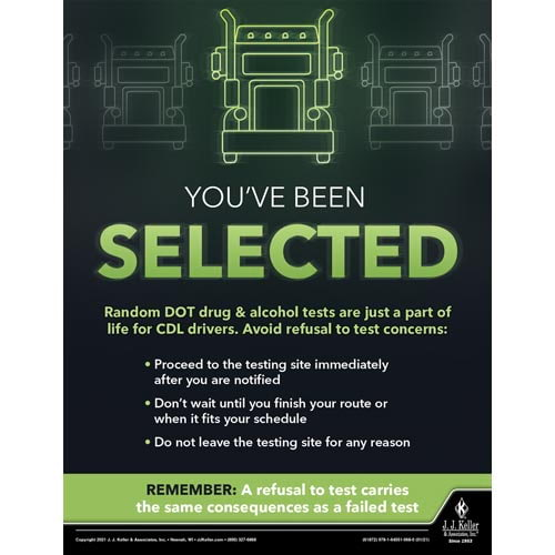 You've Been Selected - Driver Awareness Safety Poster (017621)
