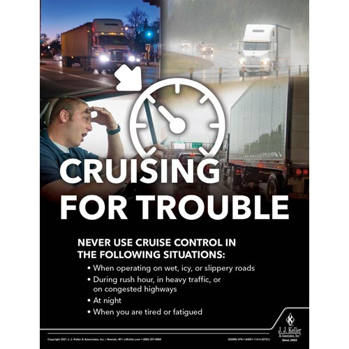 Cruising for Trouble - Driver Awareness Safety Poster (017627)