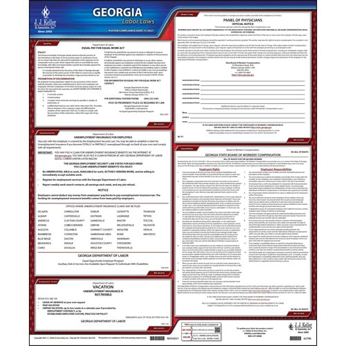 2021 Georgia & Federal Labor Law Posters (03987)