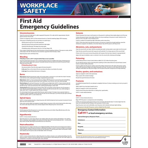 First Aid Guidelines Instructional Chart (00236)