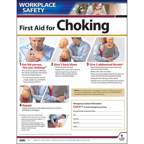 First Aid Choke Saving Instructional Chart (00475)