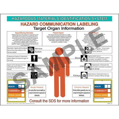 HMIS® III Target Organ Poster (01871)