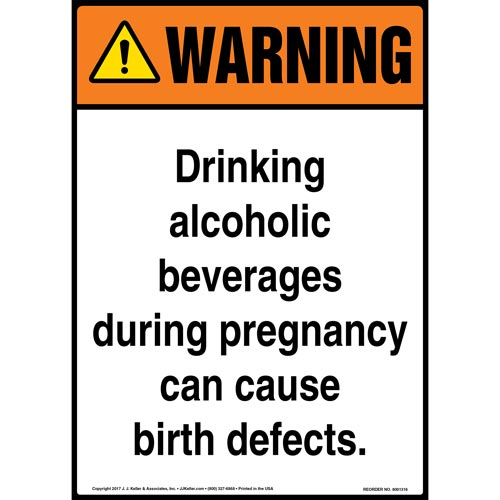 Warning: Drinking Alcoholic Beverages During Pregnancy Sign - ANSI (012424)