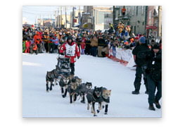 2012 Iditarod Signed Print #4