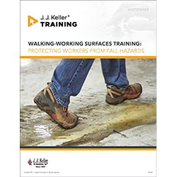 Walking-Working Surfaces Training - Free Whitepaper